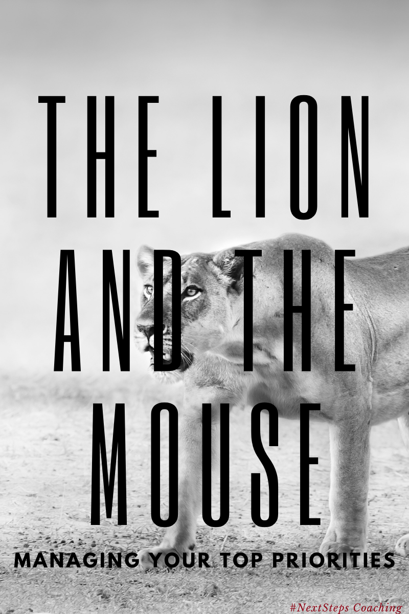 "Lion Hunting in background with ""The Lion and The Mouse"" text overlay"