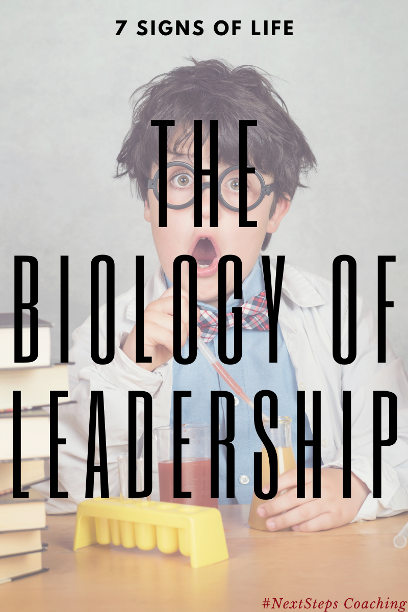 The Biology of Leadership cover text