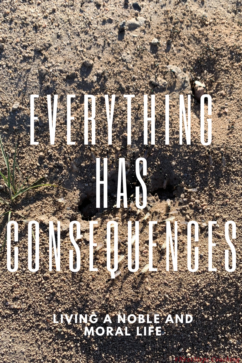 Blog Post Cover Photo. An anthill with ants and overlay text that says everything has consequences