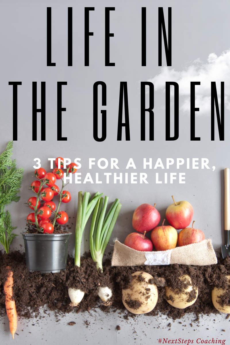 Life in the garden blog post cover image. A row of vegetables planted in dirt.